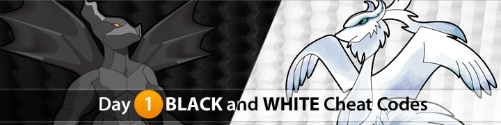 Pokemon Black & Pokemon White